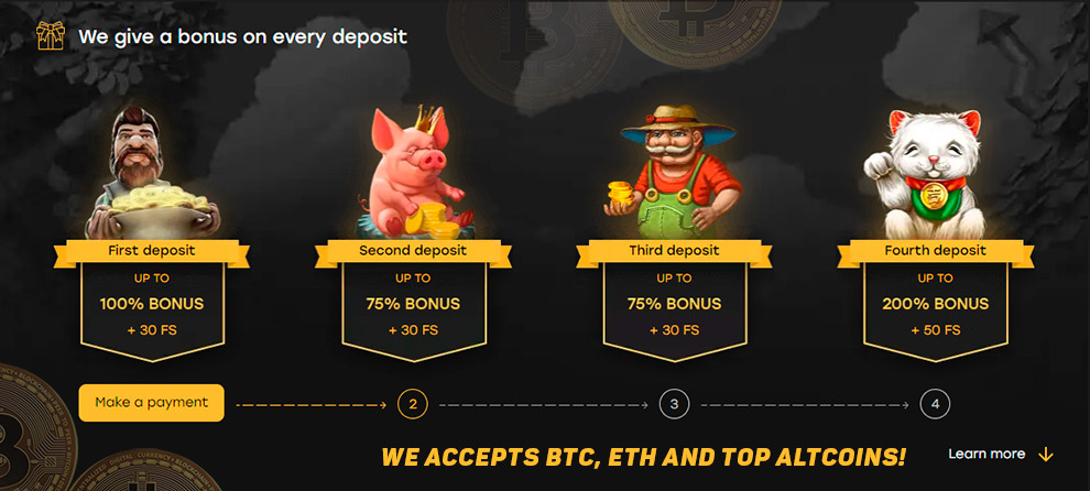 Coin bitcoin slot neoperl